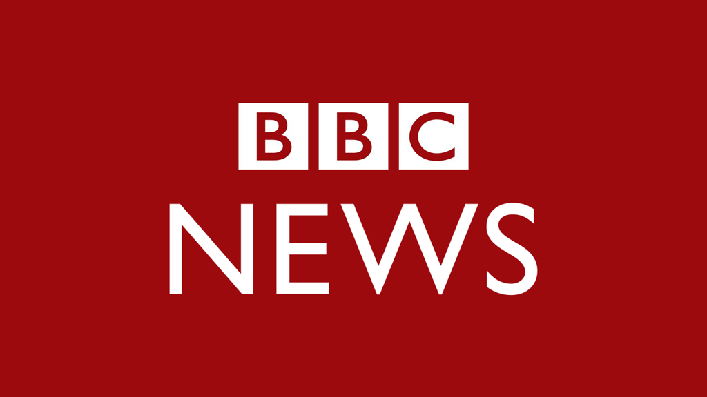 BBC news published an article about Mary Rose